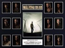 The Walking Dead Season 4  (16 x 12) Display