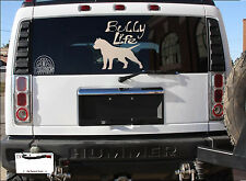 "AMERICAN BULLY *C556* decal LARGE SIZES 13"" sticker pit bull bully life"