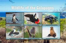 Guyana 2017 Birds WILDLIFE OF GALAPAGOS I201803