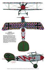 Albatross & Spad, Aviation Art Print, Ernie Boyette