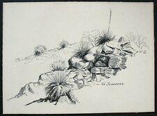 Vtg. Orig. Desert Landscape Drawing / Sketch by A. Sommers - Yucca Plants, Rocks