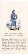 A2770) ALPINO IN DIVISA DEL 1873.