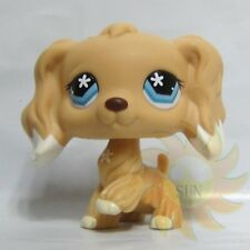 Littlest Pet Shop LPS Figure Toys #748 Tan Cocker Spaniel Flower Star Eyes Dog