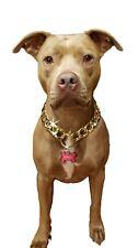 Plastic, light weight, gold chain dog collar