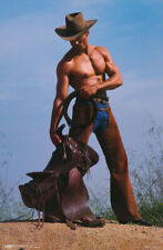 POSTER :ART : CHAPS - COWBOY - SEXY MALE MODEL - FREE SHIPPING ! #PC1071 LW14 J
