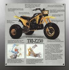 YAMAHA TRI-Z 250 TRIZ VINTAGE IMAGE REPRODUCTION BANNER