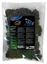 Natural Terrarium Moss for Tropical Terrariums Reptiles Frogs 200g