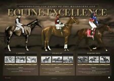 EQUINE EXCELLENCE CARBINE PHAR LAP MAKYBE DIVA LIMITED HORSE RACING PRINT
