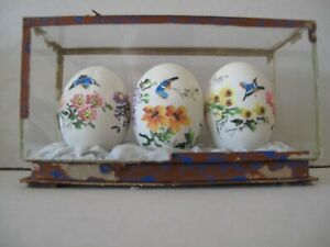 ANTIQUE JAPANESE HAND PAINTED EGGS IN BESPOKE DISPLAY CABINET