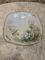 Antique RS Germany Sherratt's Hand Painted Plate
