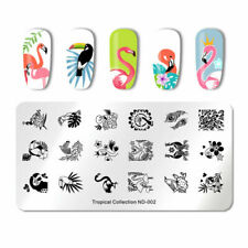 Nail Art Stamping Plate Image Decoration Summer Flamingo Palm Tree Leaves (ND02)