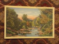 Vintage Postcard Trout Stream in The Poconos, Pa.