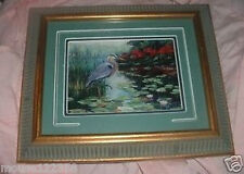 Framed Bird Picture Carolina Mirror Fine Arts   11 x 13