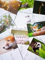 2019 British Wildlife Calendar - A4 - Wall Calendar - Nature / animal lover