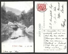 1906 South Africa Postcard - Transvaal Stamp - A Creek in Natal
