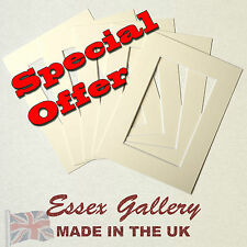 JOBLOT 50 IVORY / CREAM picture and photo mounts 8x6 for 6x4