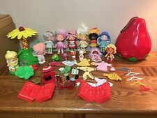 LOT OF VINTAGE STRAWBERRY SHORTCAKE DOLLS CARRYING CASE PETS CAROUSEL CLOTHES