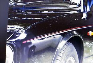 Jaguar XJ40 1986-1994 2 colour Body stripe Pinstripes Stripes Coachline kit