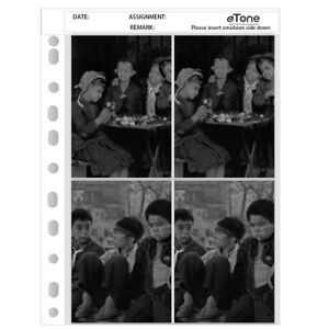 50x Archival Storage Page Sheets 4x5 B&W Color Film Negative Preservers Slide