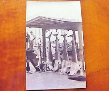 1920's Shark Fishing TH Hawaii AZO RPPC
