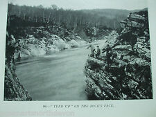 """ANTIQUE PRINT C1904 FISHING VINTAGE """"TEED UP ON THE ROCK'S FACE"""" FLY FISHING ART"""
