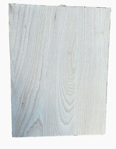 "Thin-line Swamp Ash 19x14x1.66""guitar🎸Core Natural Clear Coat"