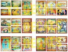 HO Scale Circus Sideshow Decals MEGA SHEET #3