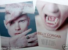 "BILLY CORGAN ""THE FUTURE EMBRACE"" 2-SIDED U.S. PROMO POSTER - Smashing Pumpkins"