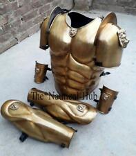Medieval King Spartan Muscle Jacket, Leg & Hand Guard Set Knight Compact Set