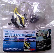 鳥羽水族館Yujin Marine Fish Gashapon Moorish Idol (color stone)