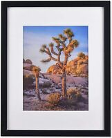"""Black 20""""x24"""" Photo Frames matted to 16""""x20"""" Photos, Polystyrene Glass for Wall"""