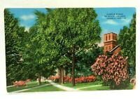 Angola Indiana Tri-State College Campus Vintage Postcard