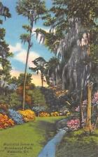 VALDOSTA, GA  Georgia     BROOKWOOD PARK  Flowers & Stream     c1940's Postcard