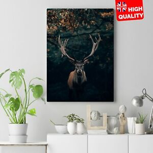 RED STAG CANVAS WALL ANIMAL DEER ART PICTURE PRINT
