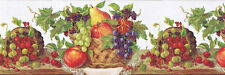 KITCHEN FRUITS and BERRIES Wallpaper Border RCH970420