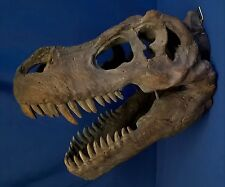 NEMESIS NOW TYRANNOSAURUS REX DINOSAUR HEAD FOSSIL WALL PLAQUE - ANIMAL FIGURE