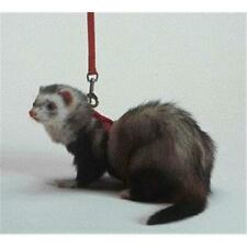 Ferret Harness And Lead Combo- Red 48 Inches - Fp-004