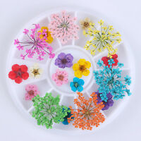 3D Nail Art Decoration Preserved Mixed Dried Flower Design Manicure Decor Tips