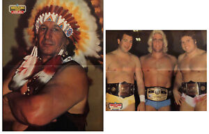 """Vintage RIC FLAIR JAY STRONGBOW 16""""x21"""" Double Sided Wrestling Poster WCW WWF"""