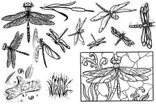 Unmounted Rubber Stamps Sheets, Dragonfly, Dragonflies, Nature Stamps, Insects