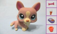 Littlest Pet Shop Dog Corgi 1158 w Free Accessory Authentic Lps Exclusive