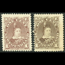 NEWFOUNDLAND Canada 1880-82 1c Brown. 2 x Shades. Unused No Gum. (WC128)