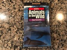 Animals In The Wild Dolphins Close Encounters New Vhs! PBS Discovery Channel