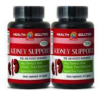 Antioxidant powder organic - KIDNEY SUPPORT FORMULA 2B - nettle bulk herb