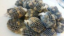 25 x PRE FILLED pva mesh bags + 5 new bait ball stringers 5 per string c pics