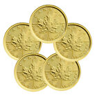 Lot of 5 - 2017 Canada $5 1/10 Oz Gold Maple Leaf in Mint Plastic SKU44191