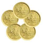 Lot of 5 - 2017 Canada $5 1/10 Oz Gold Maple Leaf in Mint Plastic SKU44191