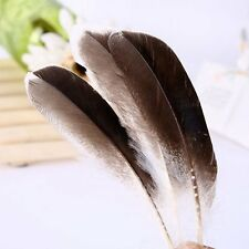 50pcs 10-15cm/4-6 inches Natural Duck Feathers DIY Accessories Crafting Pieces