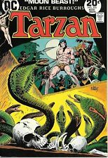 Tarzan Comic Book #225, DC Comics 1973 VERY FINE+