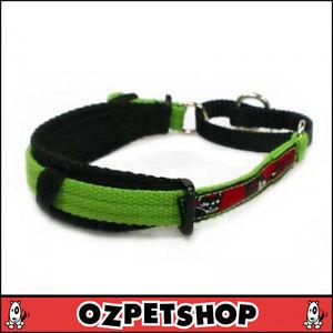 BlackDog - Black Dog Wear Italian Greyhound Collar - 7 Colours